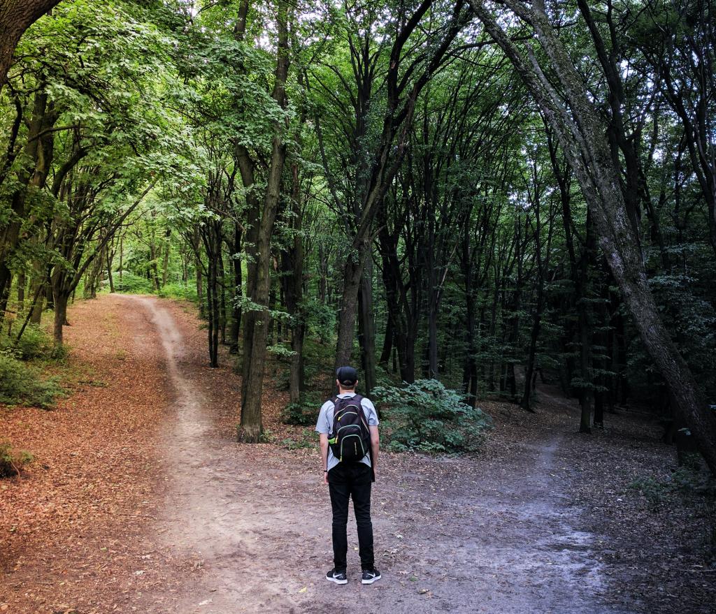 persona en un bosque ante dos caminos